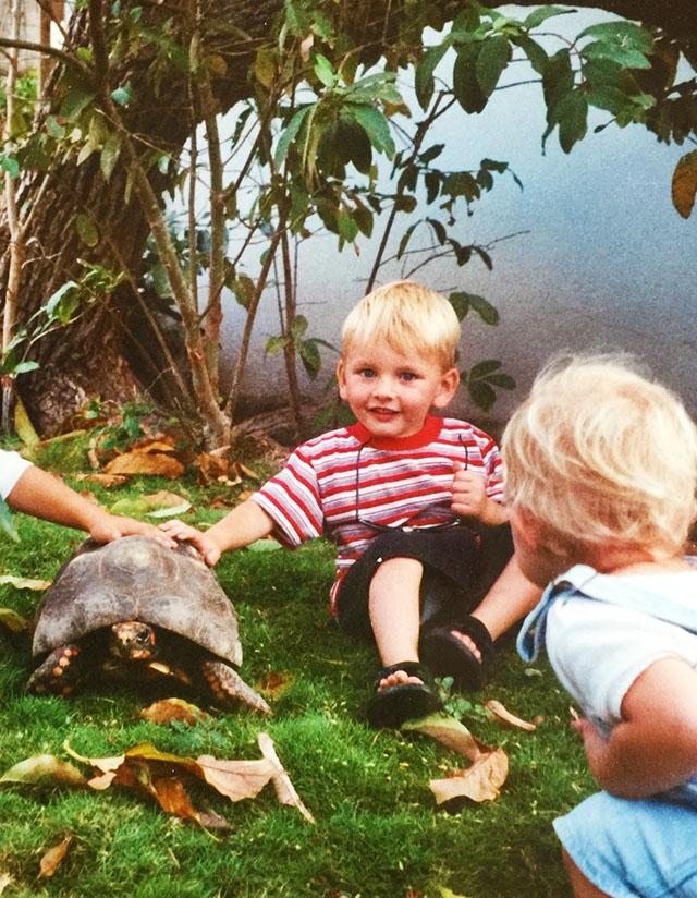 Lochlan Turtle